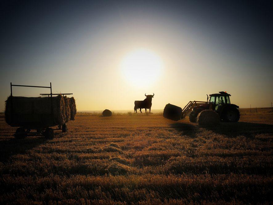 Entrega de los III Premios APAE de periodismo y fotografía agroalimentarios