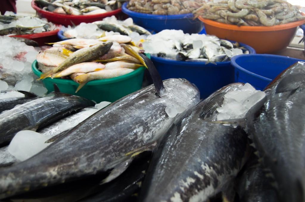 Pescado expuesto