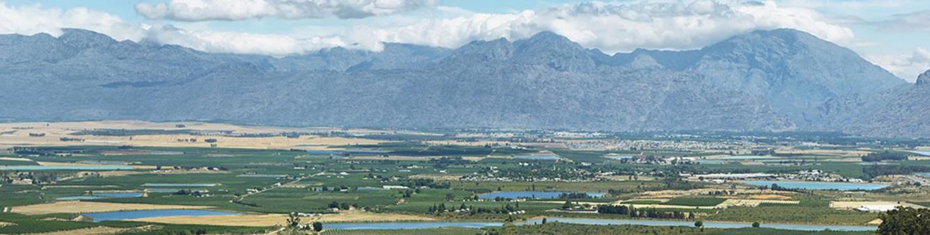 Agricultura en Sudáfrica