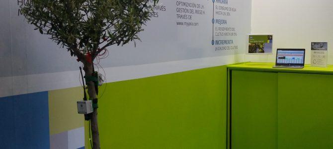 Yara Water Solution despierta gran interés en su lanzamiento en Expoliva 2017