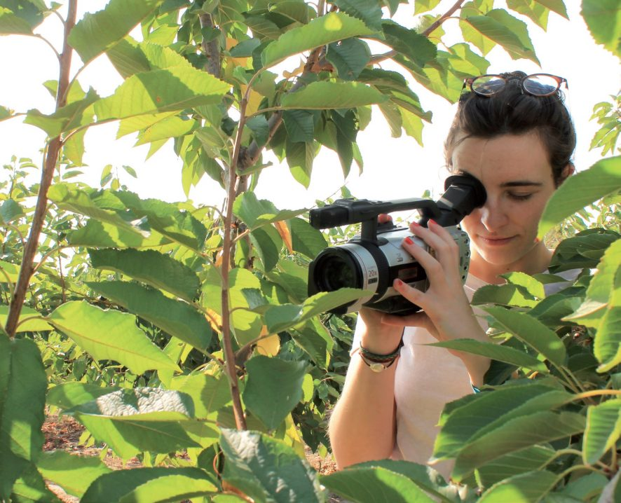Abierto el plazo de inscripción de la tercera edición del Curso de Experto Universitario en Comunicación Agroalimentaria